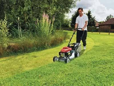 Mown the Lawn